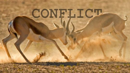 The 5 Elements Of Plot Conflict | Back Cover Copy Company
